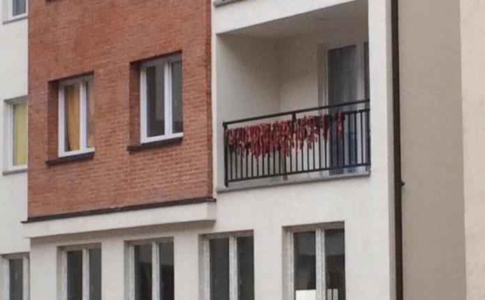 Shqiptari terr mishin në ballkon (FOTO)