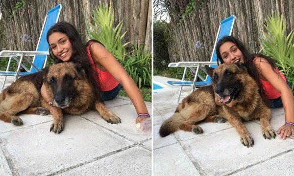 Qeni kafshon vajzën derisa po fotografoheshin bashkë (FOTO)