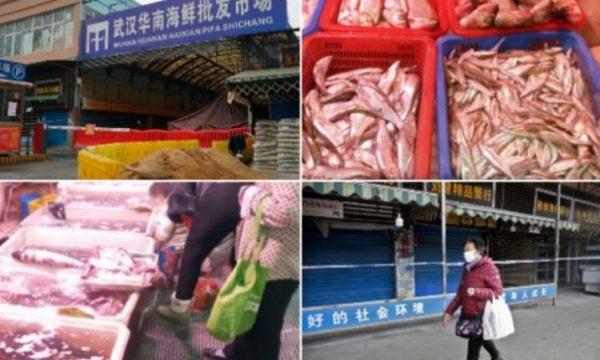 Pamje drithëruese nga tregu që solli virusin vdekjeprurës, aty hanë gjarpërinj, koala dhe akrepa (VIDEO)