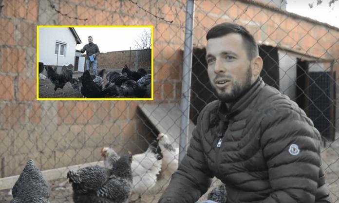 I riu nga Gjilani që nuk rri kot kafeneve, por është pasionant i madh i pulave (VIDEO)