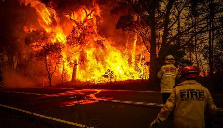 Dëmet nga zjarret i kushtojnë turizmit në Australi 4.5 milionë dollarë