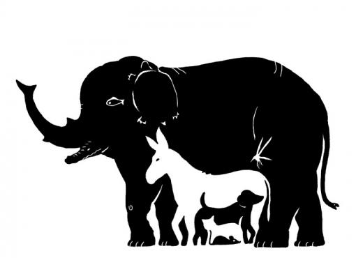 Sa kafshë shihni në foto? 99.9% e njerëzve po gabojnë në përgjigjen e tyre