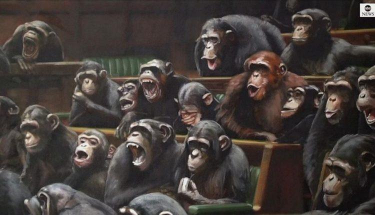 Majmunët në Parlament
