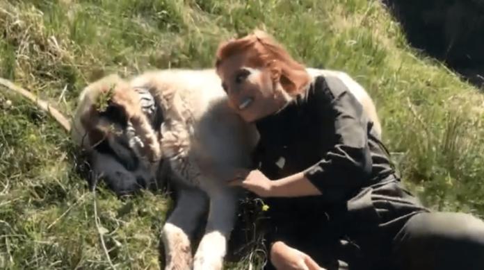 E frikshme/ Po xhironte programin, moderatorja shqiptare rrezikon seriozisht jetën (VIDEO)