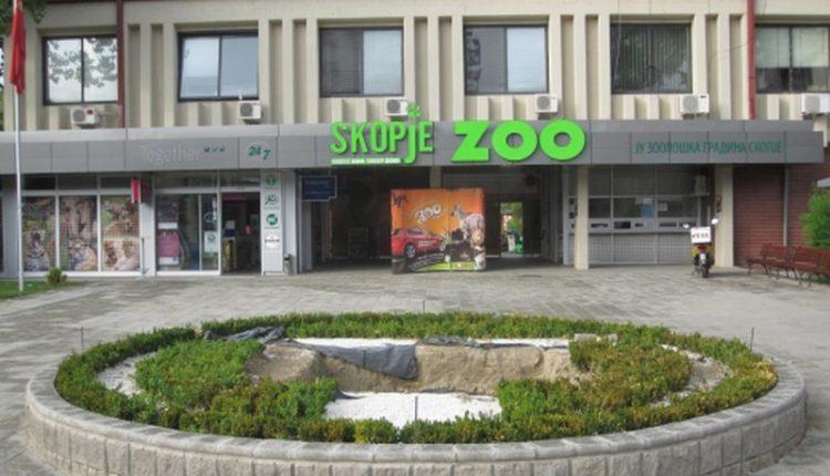 Nesër hapet kopshti zoologjik në Shkup