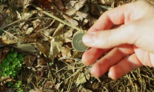 Keni gjetur para në rrugë, ky është shpjegimi popullor