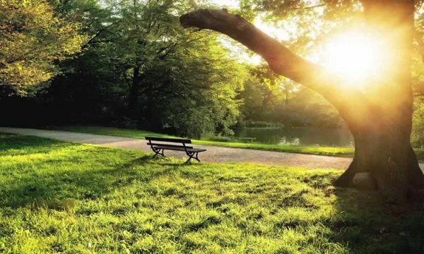 10 gjërat që nuk i keni ditur për 21 qershorin, dita magjike e vitit