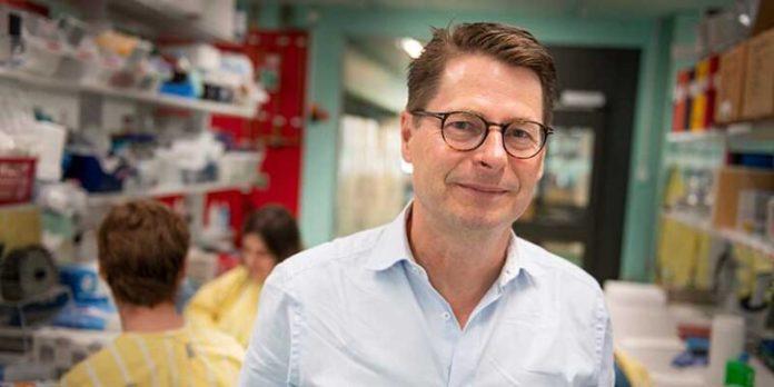 Eksperti suedez: Qelizat e njeriut po fitojnë imunitet ndaj covid-19