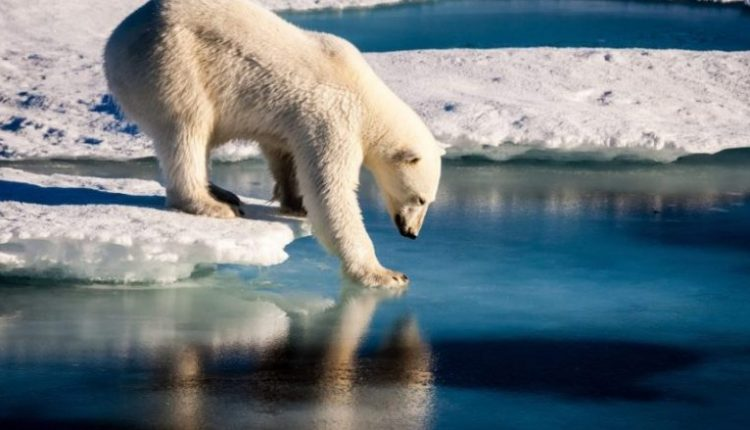 Për herë të parë në histori, akulli i detit Arktik nuk është duke ngrirë në muajin tetor