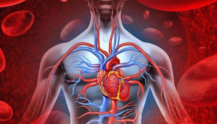 Çfarë i ndodh trupit kur rritet tensioni i lartë i gjakut