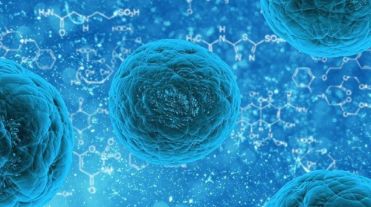 Pas koronavirusit, Kina goditet nga norovirusi