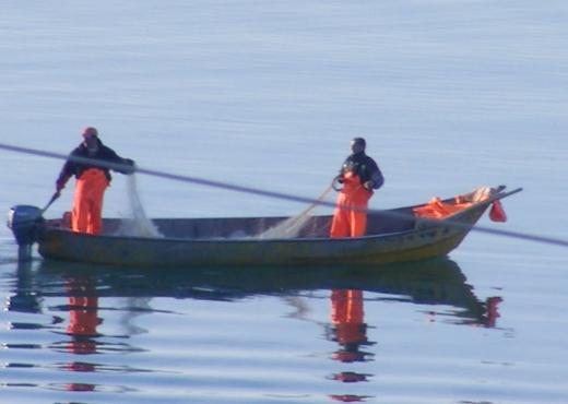 Kishte dalë për peshkim, zhduket 32 vjeçari në Durrës