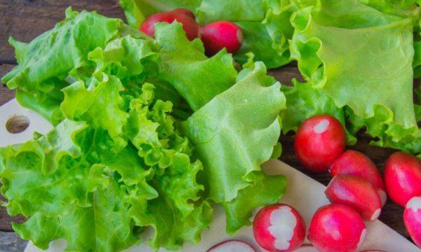 Ushqimet përmes të cilave luftohet anemia