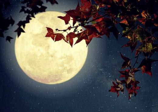 Hëna e Plotë do të shkëlqejë në qiellin e këtyre shenjave më 28 janar dhe ja ç'do të sjellë