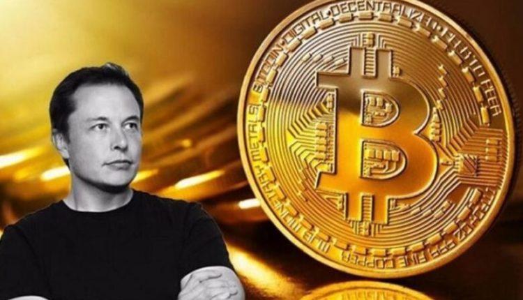 Elon Musk zotëron këto kriptovaluta