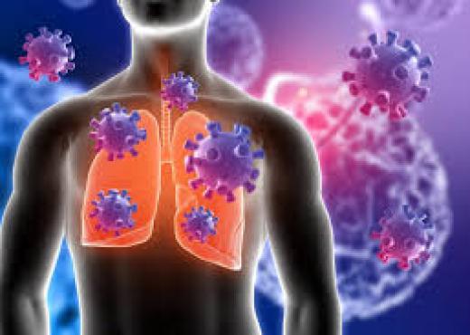 Mjekët zbulojnë lajmin e keq: Virusi mbetet në mushkëri edhe pasi jeni shëruar nga Covid-19