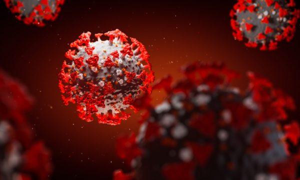 Regjistrohen gjashtë viktima dhe 19 raste të reja me koronavirus