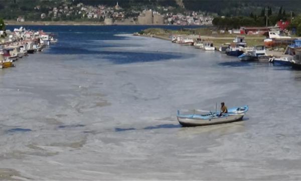 Alarm në Turqi, Deti Marmara rrezikohet të bëhet bombë epidemiologjike