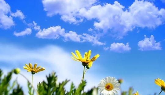 Moti sot me diell dhe vranësira mesatare, temperatura deri në 26 gradë