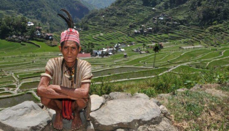 Dietat e indigjenëve që jetojnë në Amazonë, çelësi për jetë të gjatë e të shëndetshme