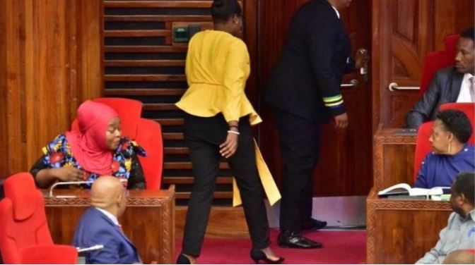 """""""Shko vishu mirë"""", deputetja përjashtohet nga seanca pse veshi pantallona të ngushta"""