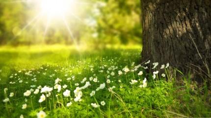 Moti me diell dhe vranësira mesatare, temperatura deri në 34 gradë