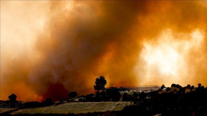 """""""Po na digjet shpirti, por do i shuajmë""""/ Ministri turk i pyjeve: Vihen nën kontroll 66 zjarre, 4 vatra aktive në Antalia"""