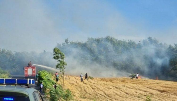10 vatra zjarri aktive në Kosovë/ Peja zona më e goditur