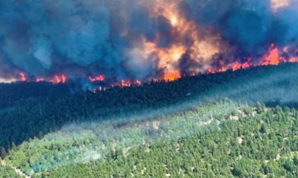 """""""Më herët ishin 50 vatra zjarri, rajoni i Pejës është më i godituri"""""""