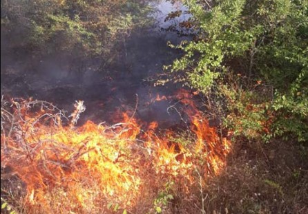 Zjarr edhe në Rankovc, digjen shtëpi