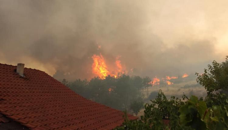 Pendarovski ka angazhuar Ushtrinë për të shuar zjarret, helikopterët nesër shkojnë në Koçan!