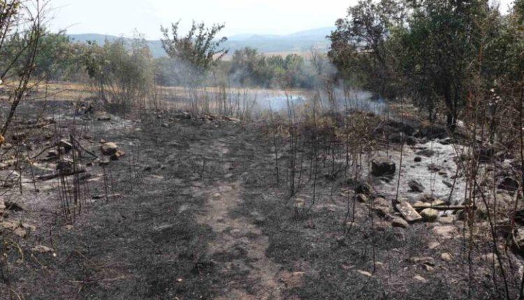 Zjarre aktive në rajonin e Kumanovës, shuhen dy vatra