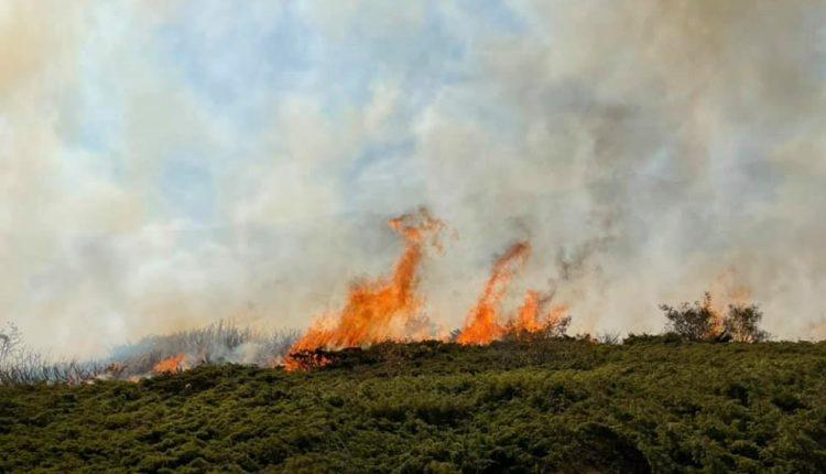 Shpërthen zjarri në Kodrën e Diellit (FOTO)