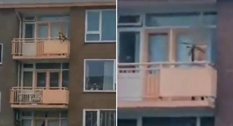 Dy të vrarë në Holandë, burri qëllon me hark e shigjeta nga ballkoni